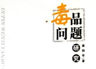 中国毒品问题及对策研究