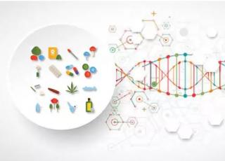 复旦大学大鼠研究提示:毒品成瘾可能遗传后代