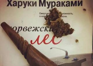 大麻对于牙买加人来说意味着什么?