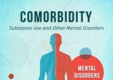 美国物质使用和其他精神障碍共病调查