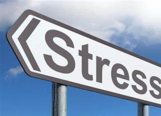 研究揭示老鼠大脑中负责压力反应的区域